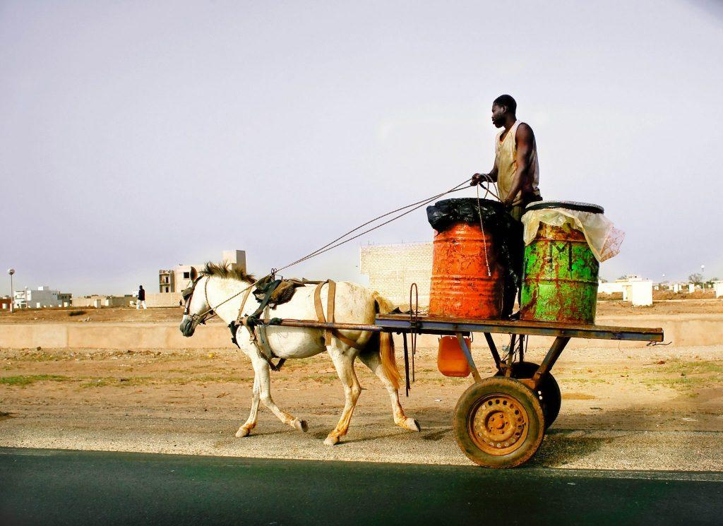 Man on Horse-Drawn Cart in Kinshasa